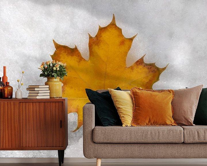 Beispiel fototapete: Herbst & Winter von Markus Jerko