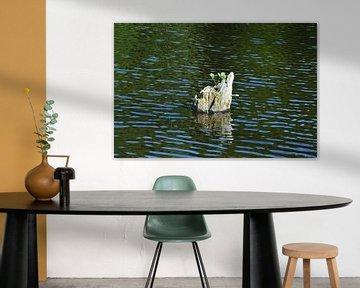 Holz im Wasser von Susanne Seidel