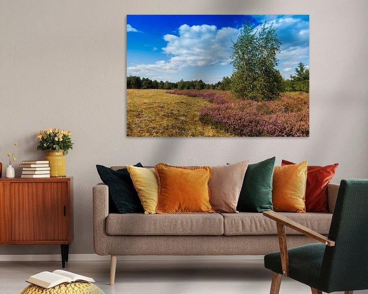 Impression: la lande et la nature dans les dunes maillées sur ChrisWillemsen