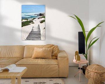 Strand van CapeNature in Zuid-Afrika van Nathalie Wilmsen
