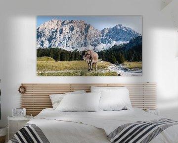 Bergblicke (Alpen, Zugspitz Arena Tirol) von Rob van Dongen