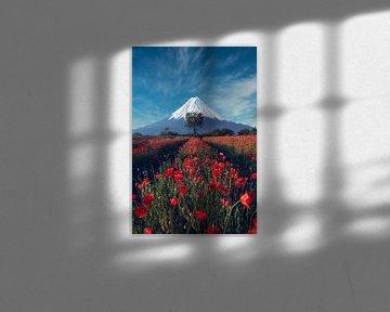 Berg Fuji met vrienden van Alexander Dorn