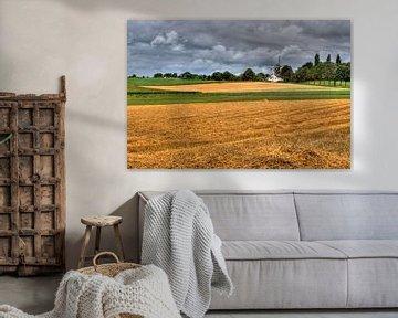 Windmolen van MSP Canvas