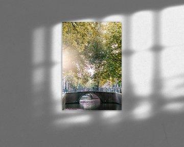Sonnenlicht durch die Bäume auf dem Amsterdamer Grachtenring. von Manon Galama