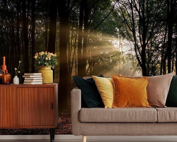 Sfeerimpressie behang: Zonsopgang in het bos van Ton de Koning