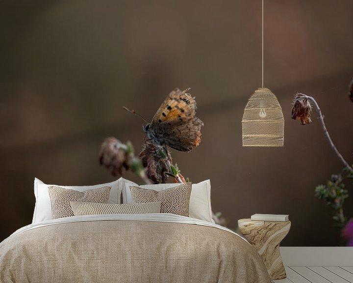 Sfeerimpressie behang: Vuurvlindertje op de uitgebloeide heide van KB Design & Photography (Karen Brouwer)