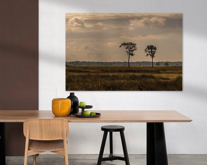 Sfeerimpressie: Nationaal Park Dwingelderveld van Ingrid Aanen