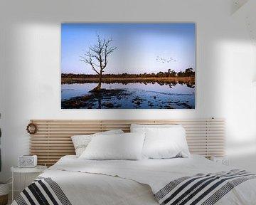 Baum in Ven......... von Wim Schuurmans