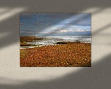 Herfst op de Waddenzee