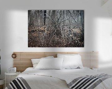 Tod im Wald von Rudolf Pelzl