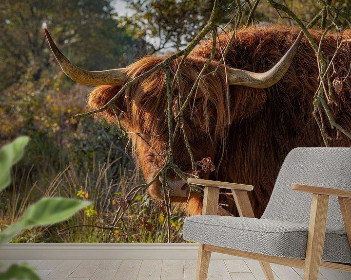 Sfeerimpressie behang: Kiekeboe van Roelinda Tip