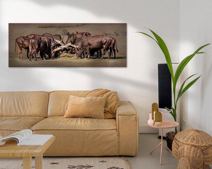 Impression: Troupeau de bovins d'eau (panorama) sur Fotografie Jeronimo