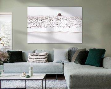Winter in Holland van Frank Peters