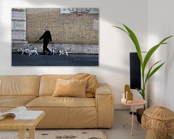 Mensch lässt Hunde raus von Marieke van der Hoek-Vijfvinkel