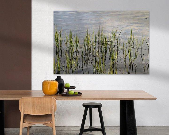 Beispiel: Schilf am Staffelsee von Miroslav Plahusch
