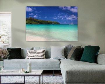 Welttournee durch die Seychellen von GoWildGoNaturepictures