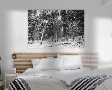 Winterlandschaft in den französischen Vogesen