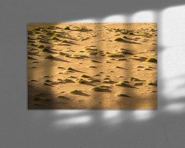 Empreintes de pas et ombres sur la plage. sur Axel Weidner