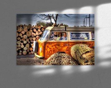 Volkswagen Bulli van GoWildGoNaturepictures