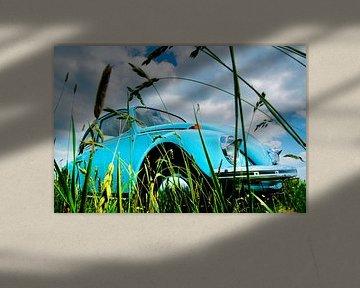 Een graskever van Harrie Muis