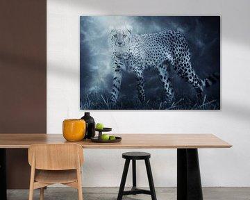Jachtluipaard, ook wel bekend als de cheeta