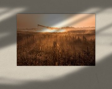 Magische ochtend met mist 1