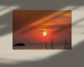 Trekvogels voor de ondergaande zon over de zee van Tilo Grellmann | Photography