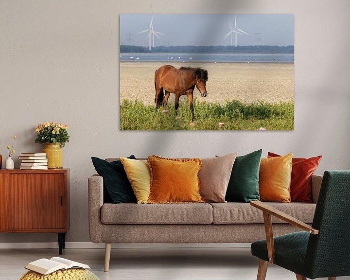 Beispiel: Freilaufendes Pferd ( Wildtiere ) von Anjella Buckens