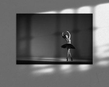 Ballerine en noir et blanc