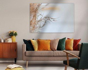 Makrofoto eines schönen getrockneten Blumenzweigs in schönen Naturtönen von Jennifer Petterson