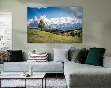 Berge Italien von Anita Kabbedijk