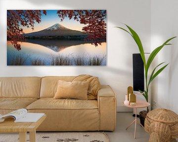 Berg Fuji van Manjik Pictures