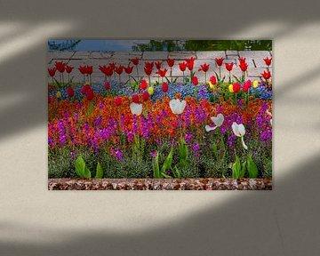Blumenpracht im Frühling in Kensington Gardens von Simon van der Plas
