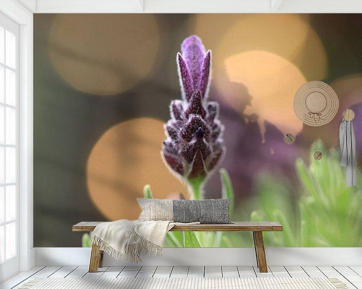 Beispiel fototapete: Lavendel von Fotografie Sybrandy
