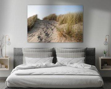 In the dunes van Marco de Groot