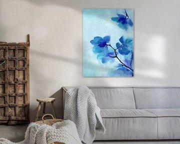 Blaue Blume 2 von Angel Estevez