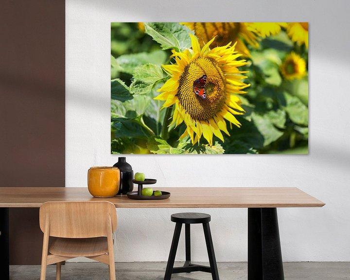 Beispiel: Sonnenblume mit Schmetterling von Frank Herrmann