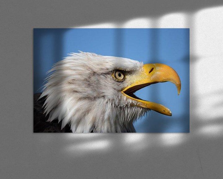 Sfeerimpressie: Profiel Amerikaanse Arend van Karin aan de muur