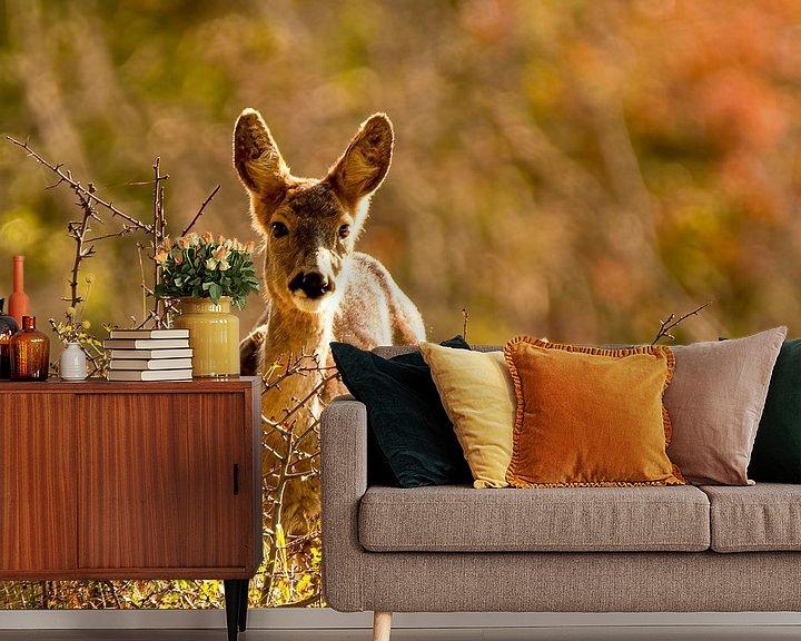 Beispiel fototapete: Hirsche im Herbstwald von Marjolein van Middelkoop