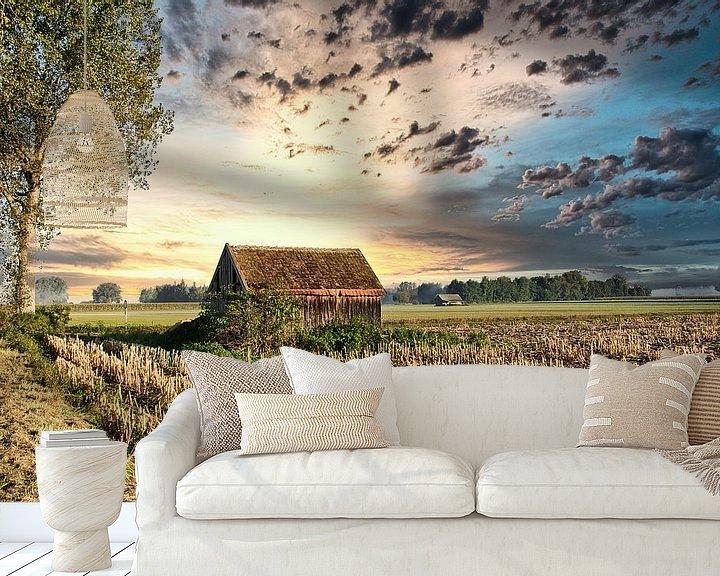 Beispiel fototapete: Maisfeld nach der Ernte von Miroslav Plahusch