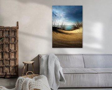 Dunes........... van Wim Schuurmans