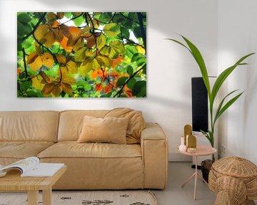 Buntes Herbstlaub am Baum von Joyce Derksen