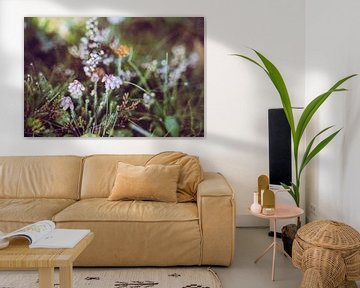 Heide in de ochtenddauw van Buis Photography