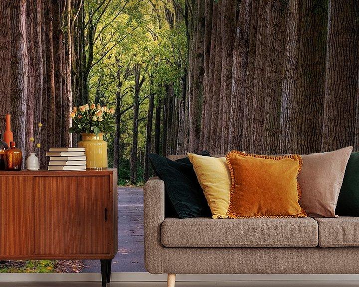 Sfeerimpressie behang: Herfst Bomen van Rob van der Teen
