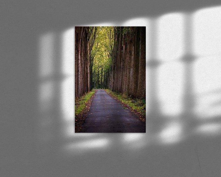 Sfeerimpressie: Herfst Bomen van Rob van der Teen