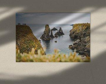 De kliffen van Belle-Île-en-Mer, Bretagne, Frankrijk van Daphne Groeneveld