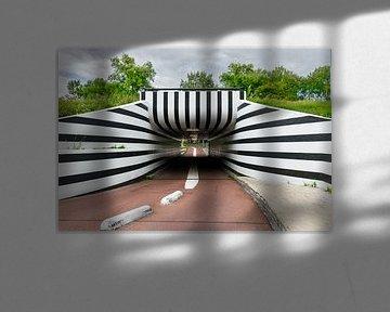 Fietstunnel Eindhoven van Patrick Verhoef