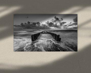 Mastkopf in schwarz-weiß von Rob Bout