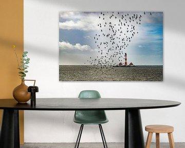 Vogels in de buurt van Westerhever van Annett Mirsberger