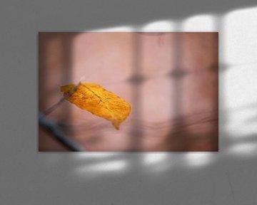 Herbstblatt von Anneliese Grünwald-Märkl